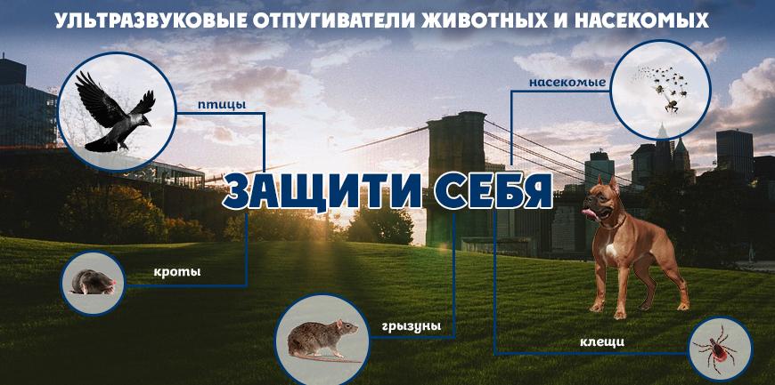 Защита от животных и насекомых