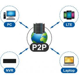 P2P IP камеры (19)
